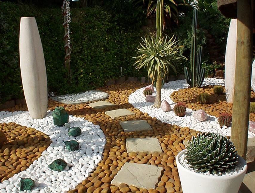 Consider Planting Cactus