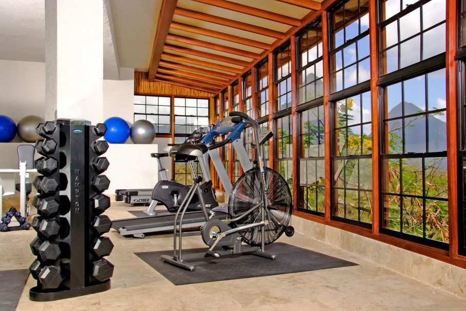 Gym Home Idea with Spectacular Landscape